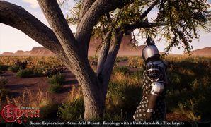 Pre-Alpha Semi-Arid Desert biome - 3.jpg