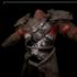 Legion Leather Armor