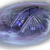 CNCKW Shielded Harvester Cameo.png