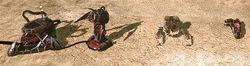 Tiberium Core Missile upgrade on SAM Turret, Stealth Tank and Attack Bike