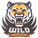 Wild eSportslogo square.png