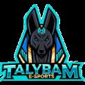 Talybam eSportslogo square.png