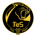 TeS Multinationlogo square.png