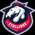 Team Stallions