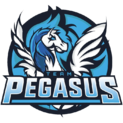 Team Pegasus
