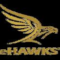 EHAWKS EUlogo square.png