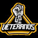 Veteranos eSportslogo square.png