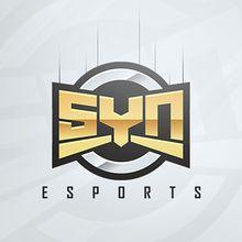 SyneSports.jpeg