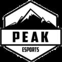 Peak Esportslogo square.png