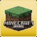 Minecraft Wiki Master.png