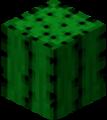 PopularLink-biomes.png