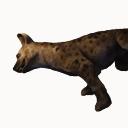 Hyena Carcass
