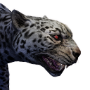 Greater Jaguar