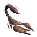 Taxidermied Scorpion