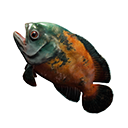 Savory Fish