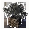 Decorative Planter (Lupin)