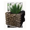 裝飾種植盆(蘆薈)