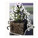 Decorative Planter (Purple Lotus)