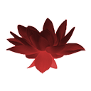 Crimson Lotus Flower