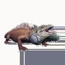 Taxidermied Salamander
