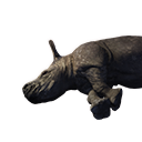 Rhinoceros Carcass
