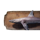 Dogfish Trophy