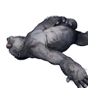 Gorilla Carcass