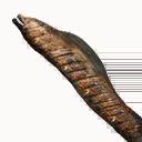 Cooked Moray Eel