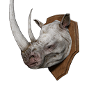 White Rhino Head Trophy