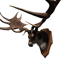 Elk King Trophy
