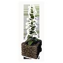 Decorative Planter (Leavening)