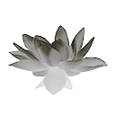 Frost Lotus Flower