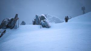 Blizzards overwatch.jpg