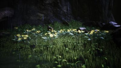 Inlet Of The Hook Official Conan Exiles Wiki
