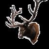 Highlands Hunter
