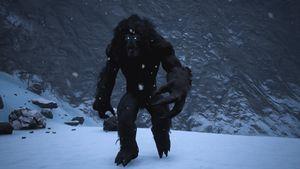 Black Yeti