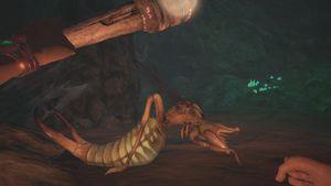 Sand Reaper Hive Queen Passage.jpg