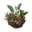 Icon lure vegetarian.png
