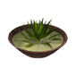 Icon aloe soup.png