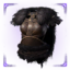 Epic icon pict heavy top.png