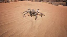 Spider (Grey)