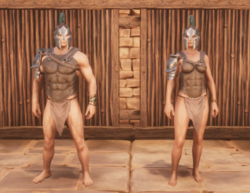 Commander's Armor