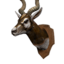 Icon trophy antilope.png