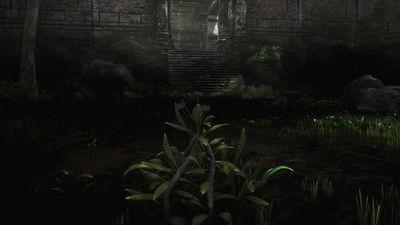 The Black Garden 2.jpg