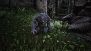 Grey Ape