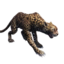 Icon Stuffed Jaguar.png