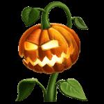 Pumpkin plant.png