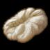 Dough Icon.png