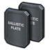 Ballistic Plate Icon.png