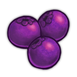 Violet Berries Icon.png